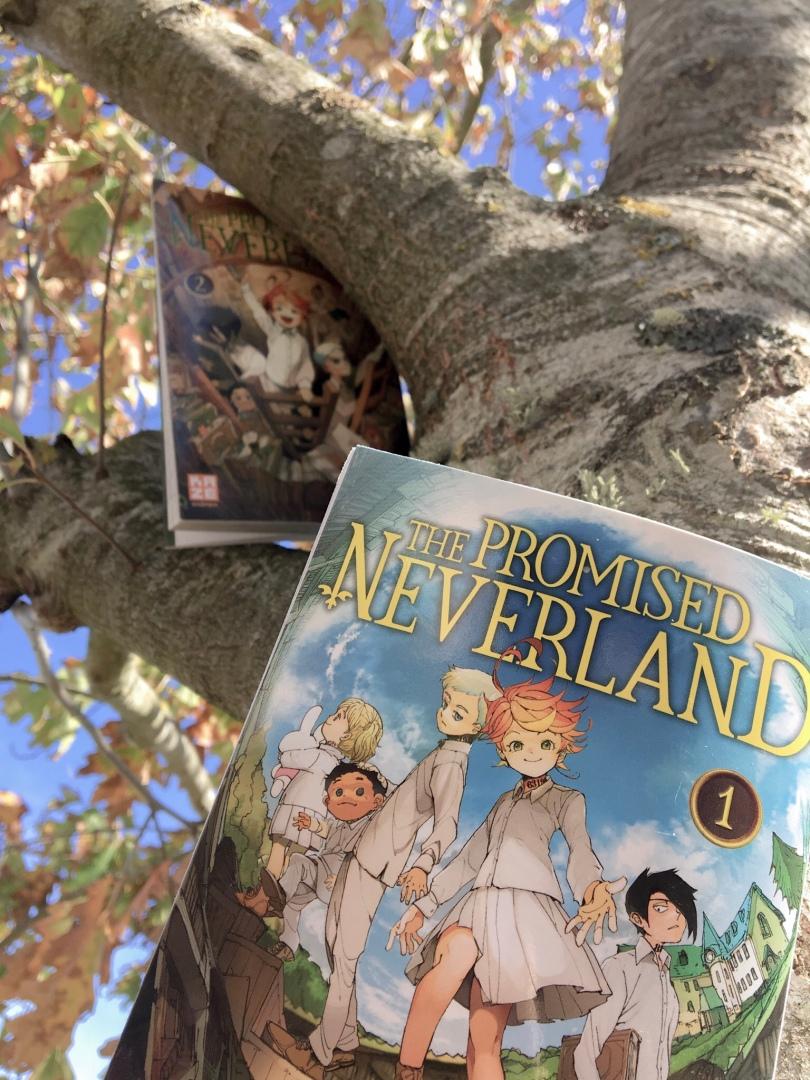 KAZE - The promised neverland, tome 1 et 2 - La page en folie